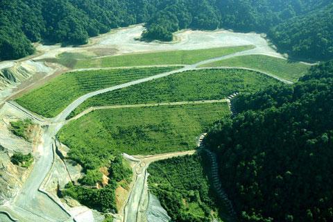 Newmont Mining Environmental Sustainability